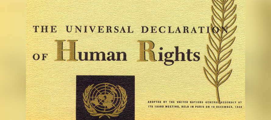 Safeguarding human rights for all