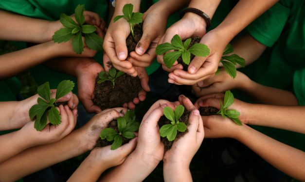 Da'wah for Environment: Let our actions talk