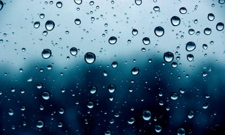 A thirst for a rain drop