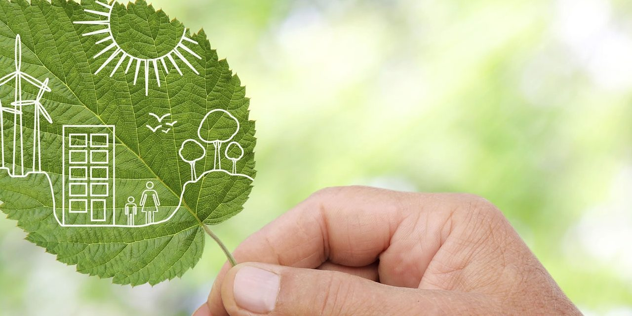 Islam and the environment Part 2: Environmental responsibility