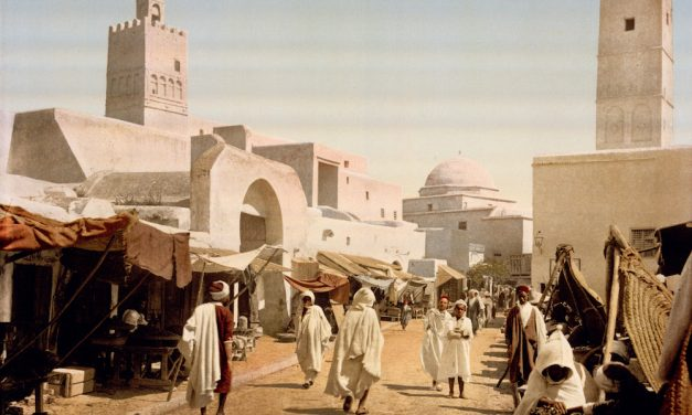 Ibn Sahnun: visionary educator of the 9th century