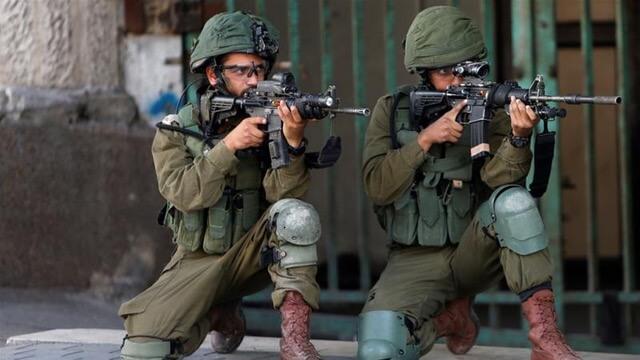 "Liberman calls critics of Israel as ""anti-Semitic supporters of terror"""