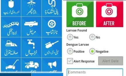 Pakistan making great strides in E-Governance