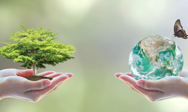Islamic principles in dealing with the environment