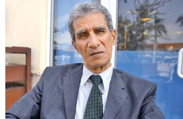 Egypt detains former diplomat after calls for referendum